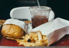 A má alimentação é o grande problema para o aumento da obesidade (FOTO: Site Unsplash)