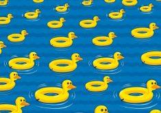 Ilustração de patos de borracha em formato de boia em água azul