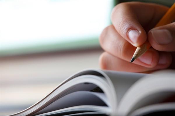 O PNPD tem como objetivo promover a realização de estudos de alto nível e reforçar os grupos de pesquisa nacionais (FOTO: Reprodução)