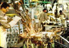 Um dos cursos é em Gestão Industrial (FOTO: Divulgação)