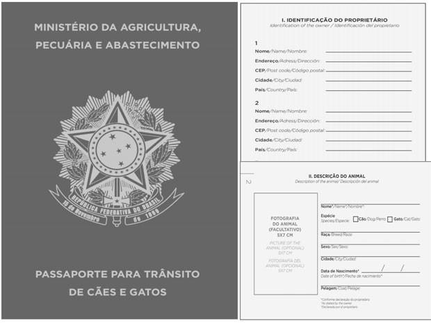 Modelo do passaporte (FOTO: Divulgação)