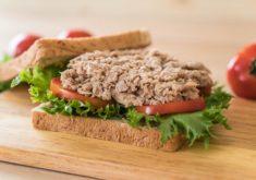 sanduiche-de-atum-em-madeira_1339-6637