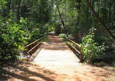 Parque ecológico do Cocó em referência a Dia Nacional da Ciência é comemorado com atividades no Parque do Cocó