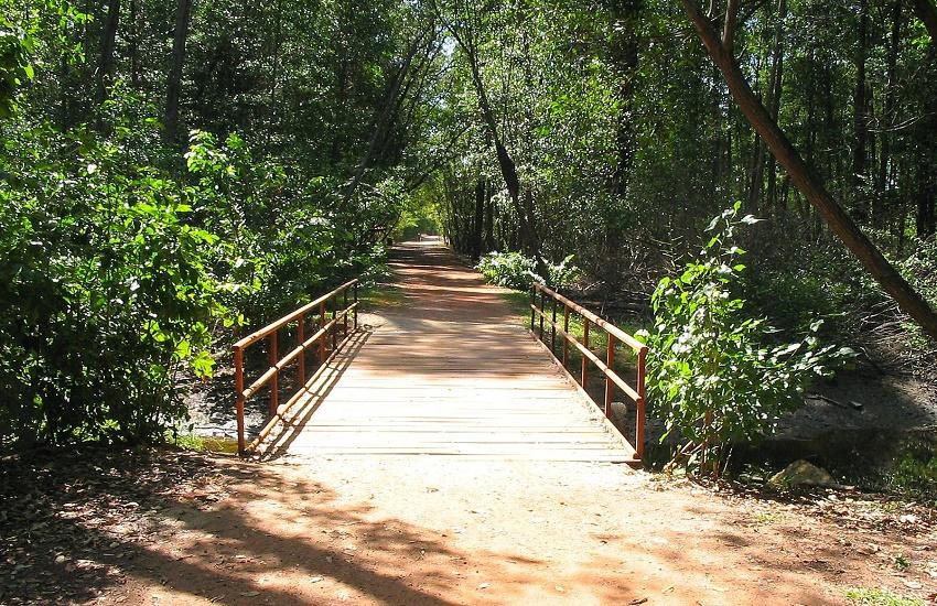Parque do Cocó é palco de programação gratuita de férias no domingo