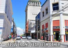 Rua em referência a Página de humor da nomes em inglês a coisas típicas do Ceará