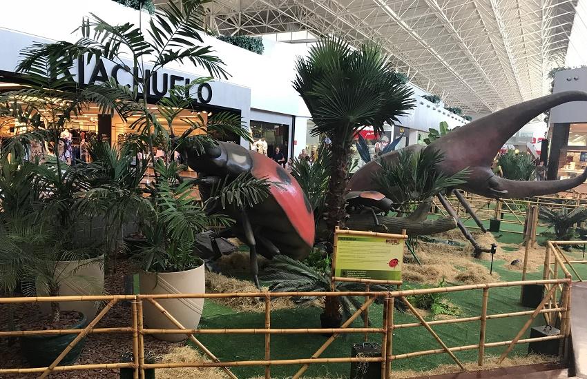 """Com réplicas gigantes, exposição chega a Fortaleza para mostrar o """"mundo dos insetos"""""""