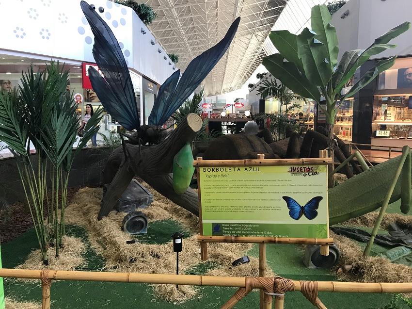 exposição-natureza-gigante_iguatemi-fortaleza-3