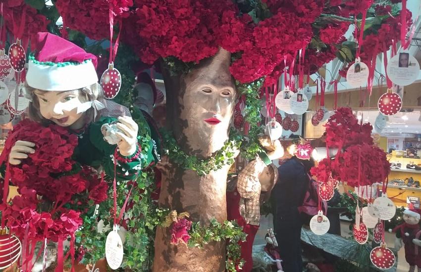 Fama da Árvore de Natal falante atrai curiosos a shopping de Fortaleza