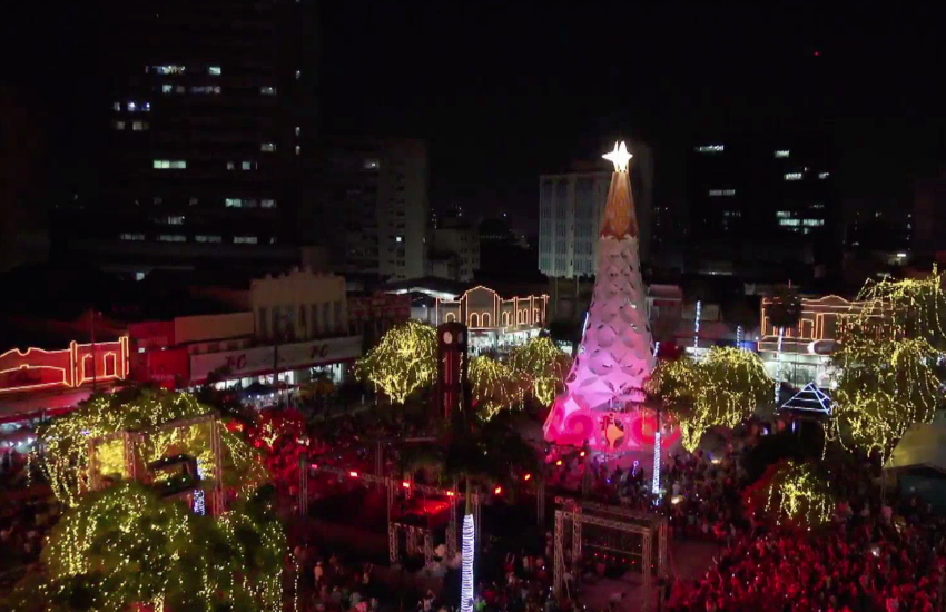 Espedito Seleiro é homenageado em árvores de Natal nas praças do Ferreira e Portugal
