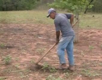 Agricultores ficam esperançosos com chuva no Cariri