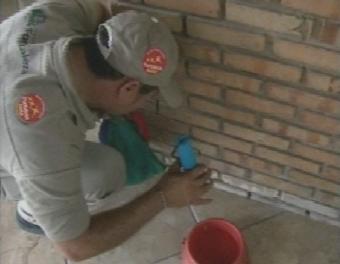 Casos de dengue aumentam em Fortaleza com a chegada das chuvas