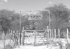 Cemitério dos Revoltosos (FOTO: Reprodução TV Jangadeiro)