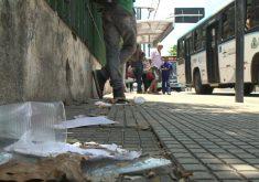 Restos de embalagem e lixo sempre estão por perto de paradas de ônibus (FOTO: Reprodução TV Jangadeiro)