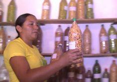 Projeto reutiliza a água das casas dos agricultores, para manter o plantio(FOTO: Reprodução TV Jangadeiro)