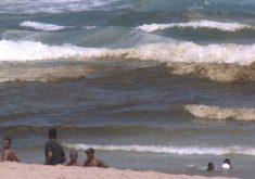 Mancha escura no mar da Praia do Futuro(FOTO: Reprodução TV Jangadeiro)