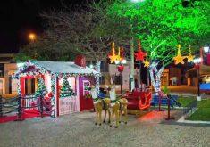 Moradores reixam a cidade a cara do natal(FOTO: Reprodução TV Jangadeiro)