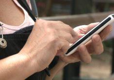 Agora é possível receber intimação via Whatsapp(FOTO: Reprodução Nordestv)