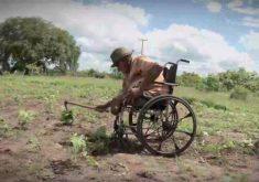 Amor pelo trabalho faz agricultor vencer todas as barreiras(FOTO: Reprodução TV Jangadeiro)