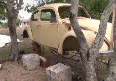 Ladrões deixam fusca pendurado em árvore (FOTO: Reprodução TV Jangadeiro)