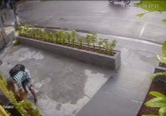 Ousadia: ladrão de plantas ataca na capital (FOTO: Reprodução TV Jangadeiro)