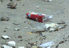 Lixo é encontrado na Beira Mar em Fortaleza (FOTO: Reprodução TV Jangadeiro)