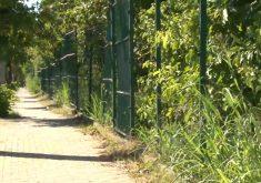 Grades do Parque do Cocó são retiradas por criminosos(FOTO: Reprodução Nordestv)