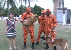 Reencontro cadela com o anjos do Corpo de Bombeiro(FOTO: Reprodução TV Jangadeiro)