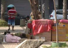 Moradores de rua que moram no Centro de Fortaleza(FOTO: Reprodução TV Jangadeiro)