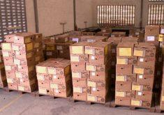 Urnas eletrônicas passaram por um novo processo de preparação (FOTO: Reprodução TV Jangadeiro)
