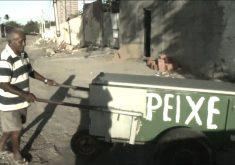 Seu Maranhão é vendedor de peixe e tem uma super história (FOTO: Reprodução TV Jangadeiro)