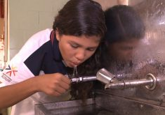 Casos de gripe H1N1 deixam as escolas em alerta (FOTO: Reprodução TV Jangadeiro)