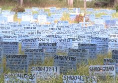 Antes de serem sepultados, os corpos passaram pelo menos 30 dias na Perícia Forense (FOTO: Reprodução/TV Jangadeiro)