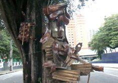Jardineiro faz sucesso com seu carisma e suas obras de arte (FOTO: Reprodução TV Jangadeiro)