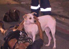 Cadelinha não saiu de perto da moradora de rua durante o atendimento (FOTO: Reprodução/TV Jangadeiro)