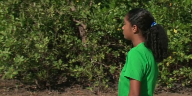 Projeto do Sesc incentiva jovens a se tornarem educadores ambientais no Eusébio